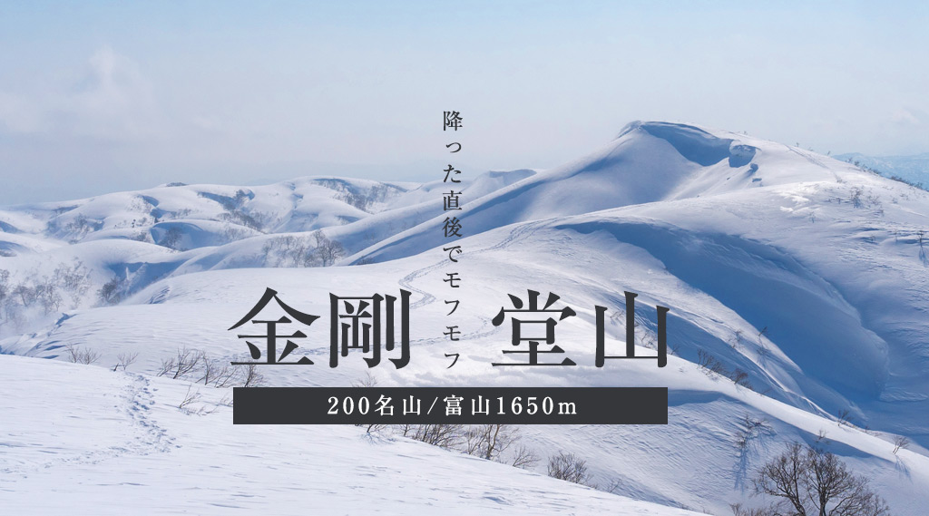 モフモフの金剛堂山